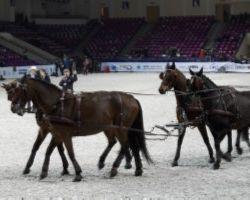 X Warsaw Horse Days